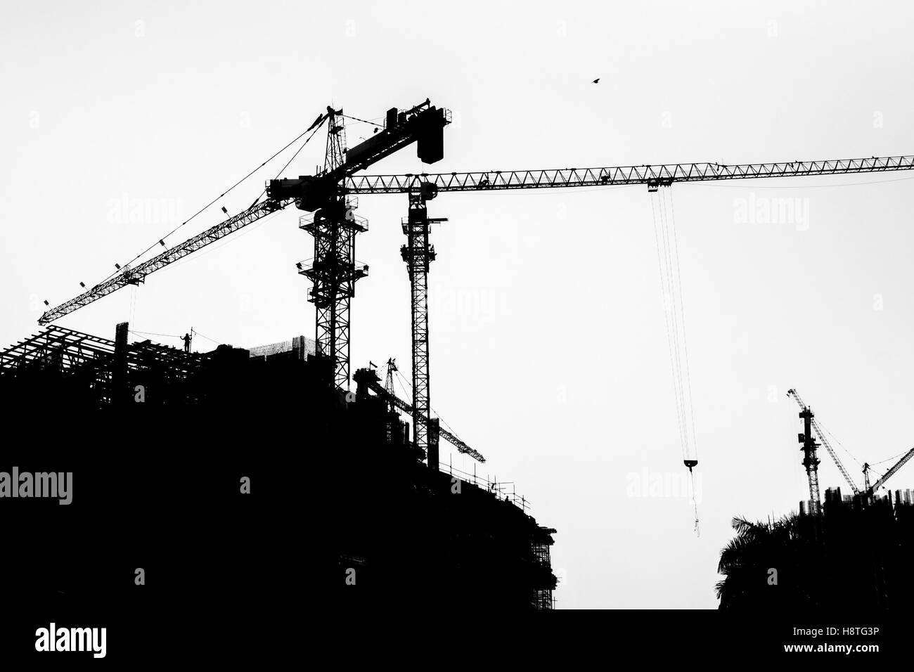 Silhouette of crane towers and construction buildings which in development process black and white photography
