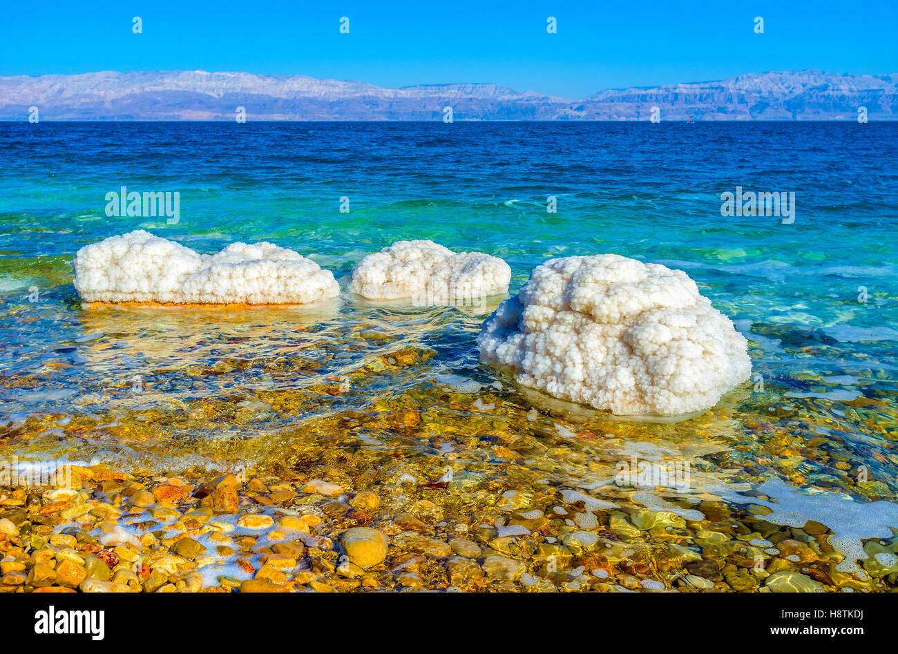The Dead Sea is one of the world's saltiest bodies of water, creating unusual stones' covers, Ein Gedi, Israel. Stock Photo
