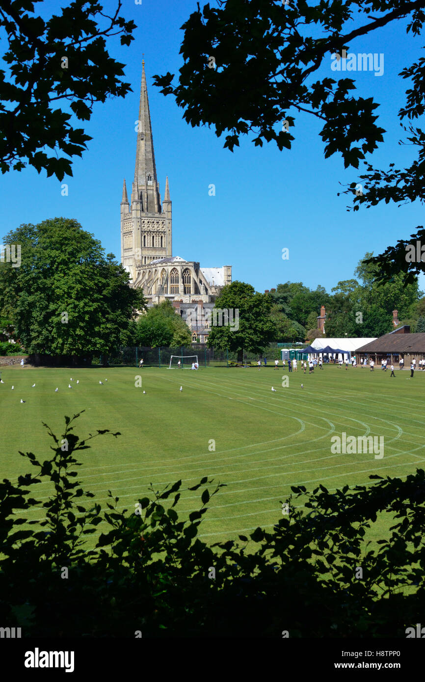Spire of Norwich Cathedral seen through trees with the playing field of Norwich Lower School in the foreground. Stock Photo