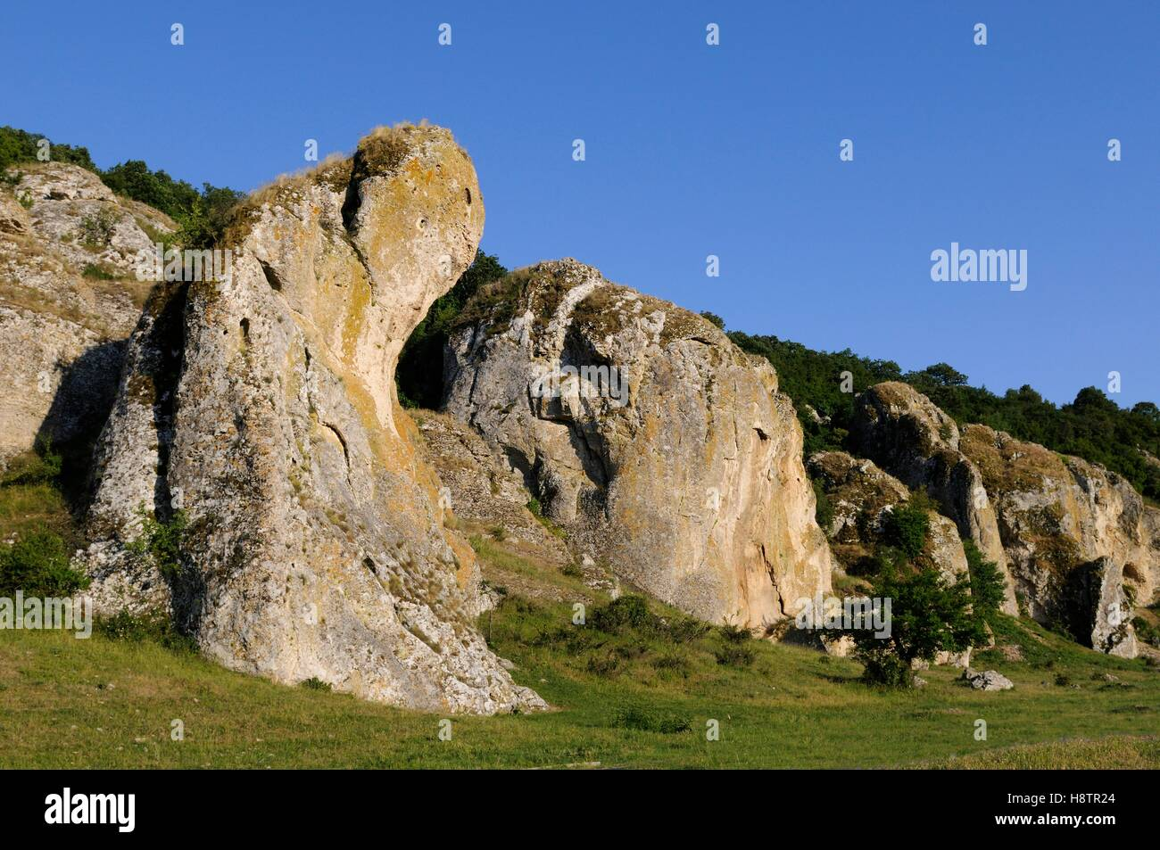 Mesozoic Lime rocks,the oldest in Europe, Geological Reserve Cheile Dobrogei, Danube Delta, Romania - Stock Image
