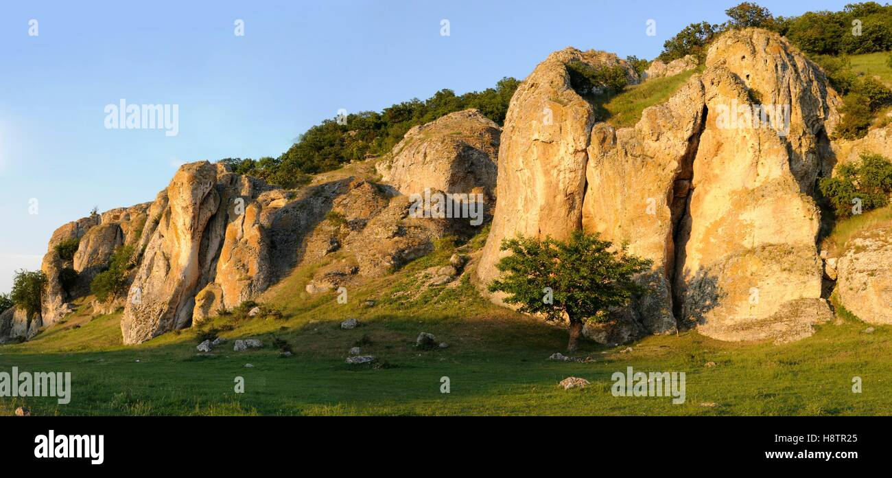 Mesozoic Lime rocks, Geological Reserve Cheile Dobrogei, Danube Delta, Romania - Stock Image