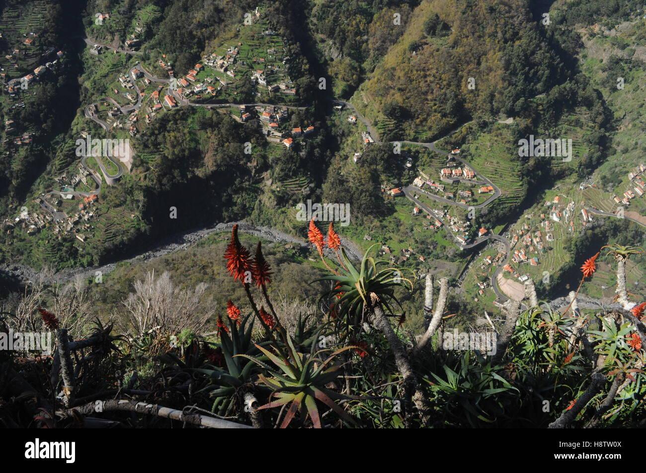 Village near Curral das Freiras, Madeira - Stock Image