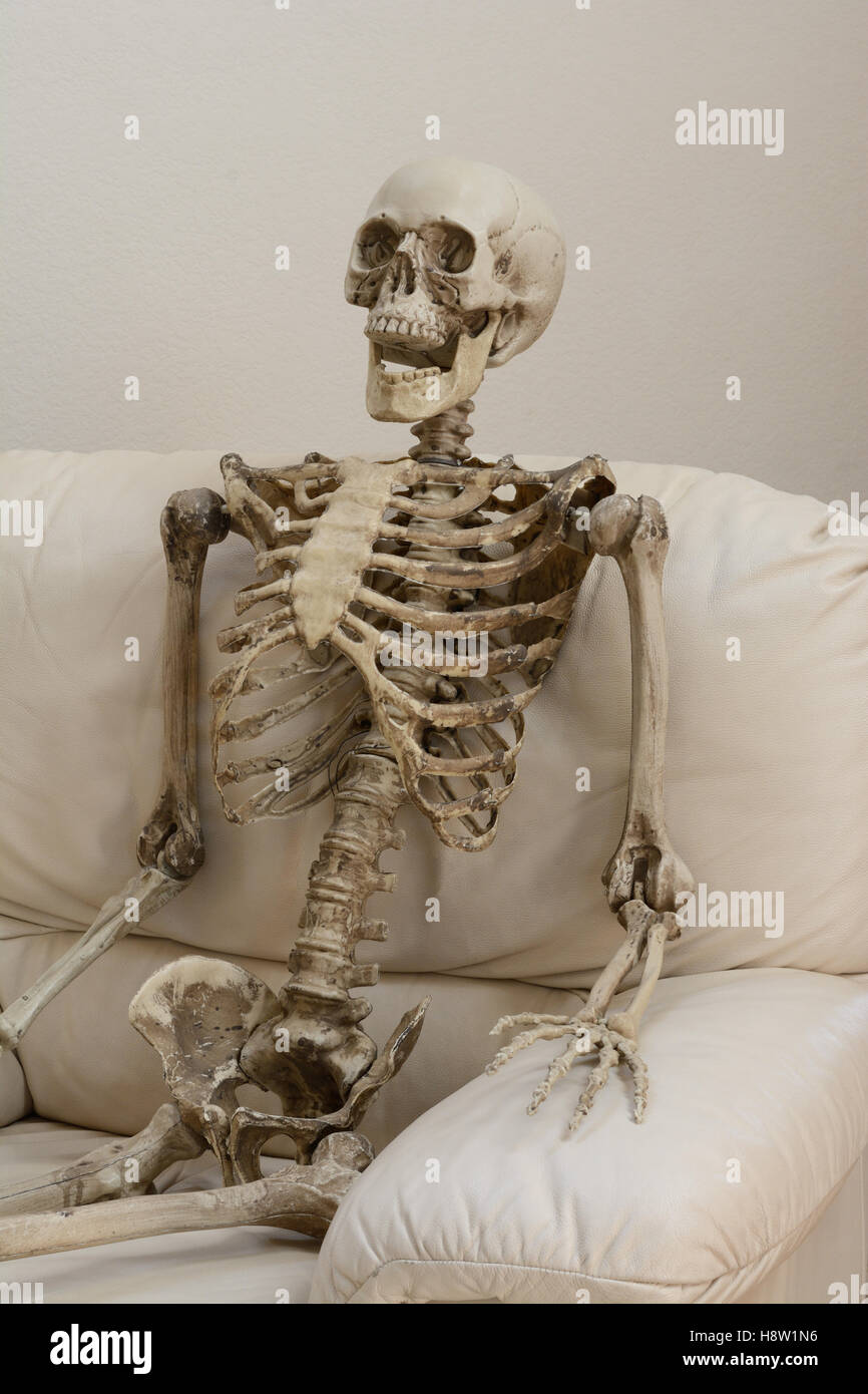 Image result for images of skeleton in chair with cobwebs