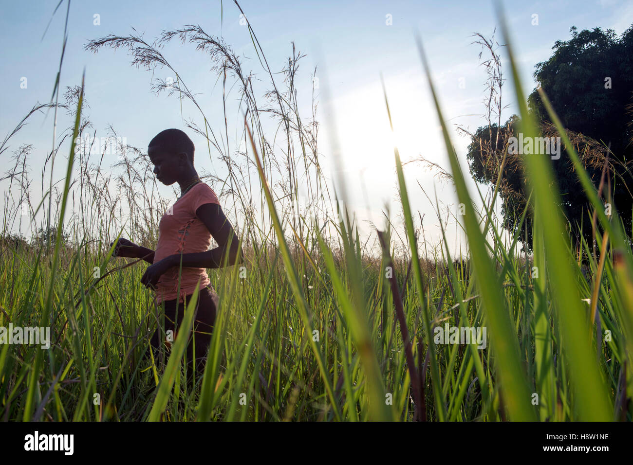 South Sudan refugee walking a field in North Uganda, near the town of Adjumani. Nov, 2016 - Stock Image