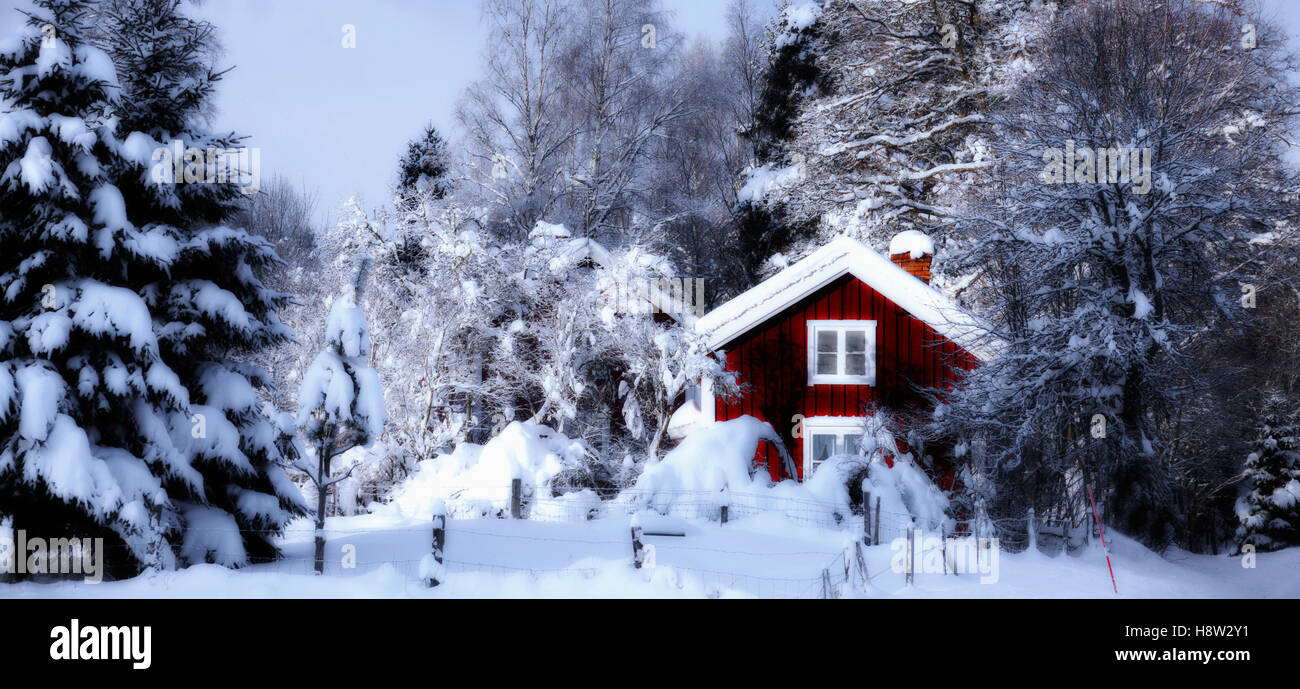 old red cottage, snow and winter scenery from sweden - Stock Image