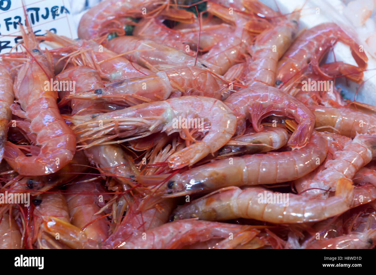 Close Up Of Fresh Whole Raw Shrimp Or Prawns On Display In Fish