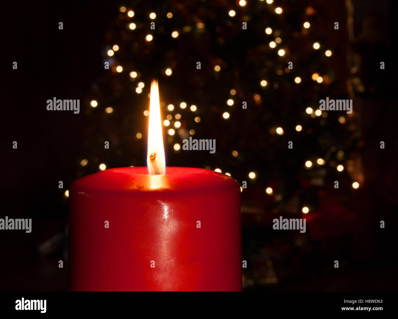 Bright red candle in front of a lit Christmas tree behind - Stock Image
