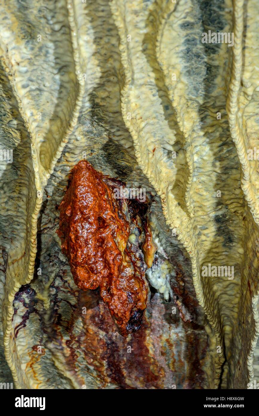 Bacteria colony profite damp seepage in a cave, Bugey, Jura, France - Stock Image