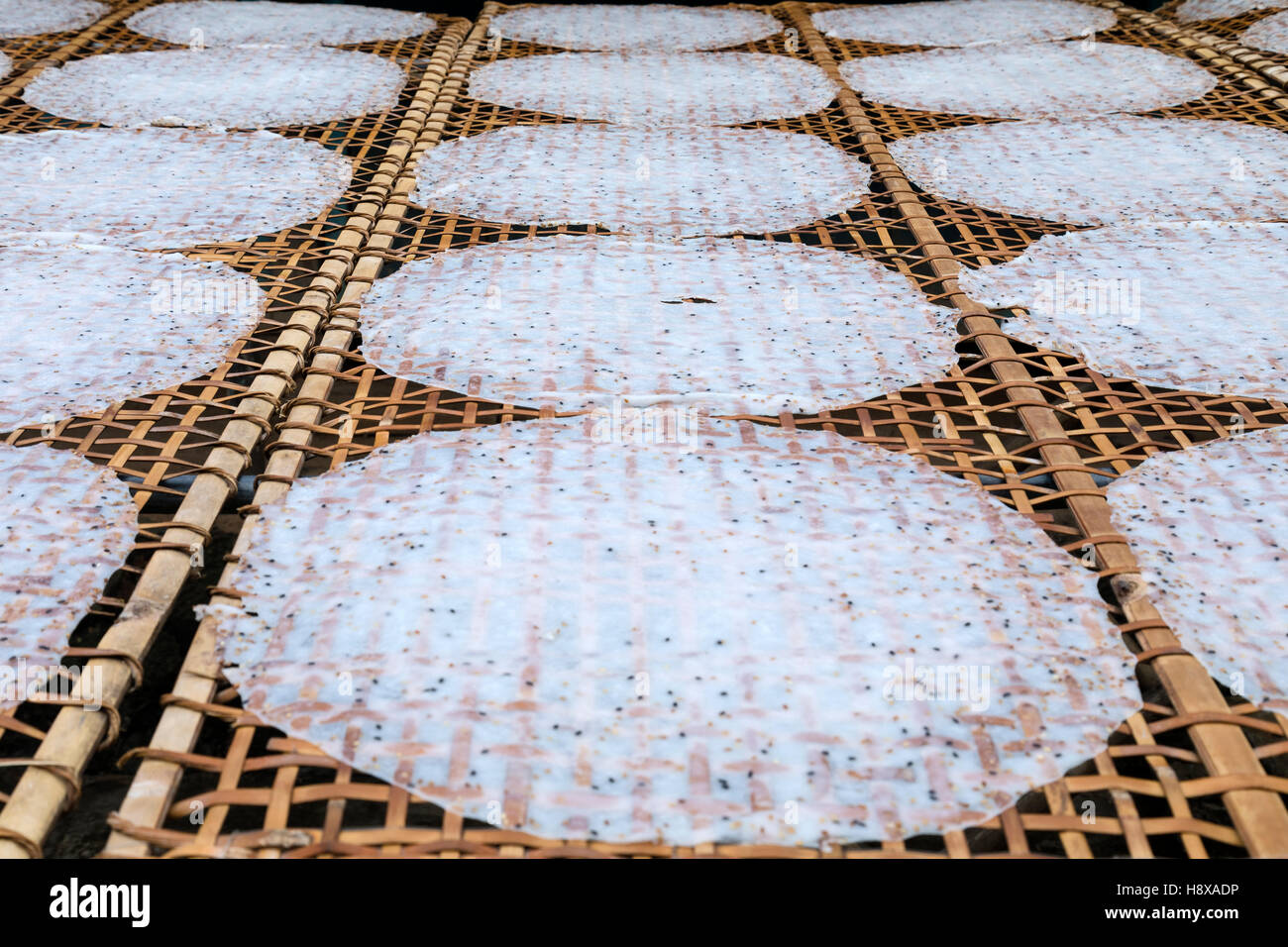 rice noodles lying out for drying in Cai Be, Mekong Delta, Vietnam, Asia - Stock Image