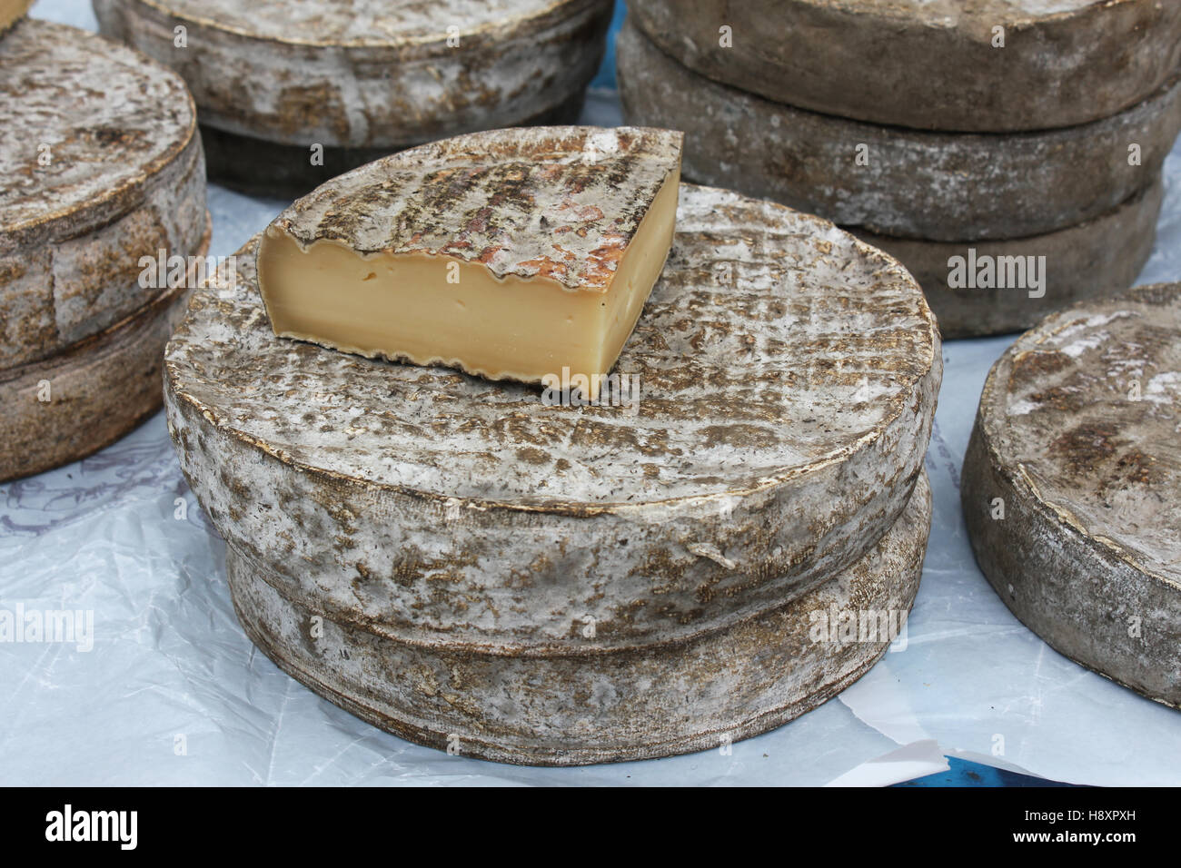 Artisan cheese for sale at a farmers market. - Stock Image