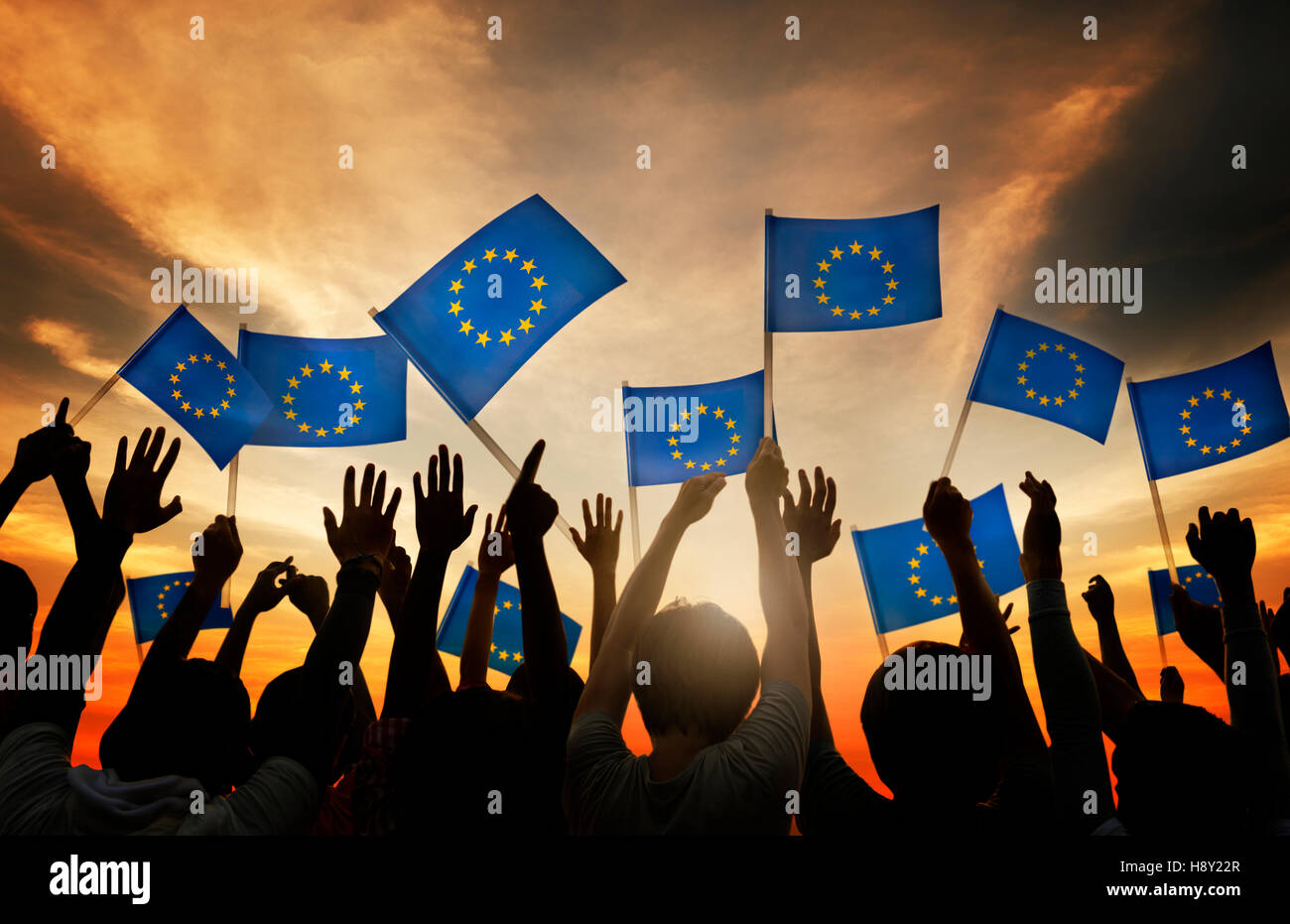 Group of People Waving European Union Flags in Back Lit Stock Photo