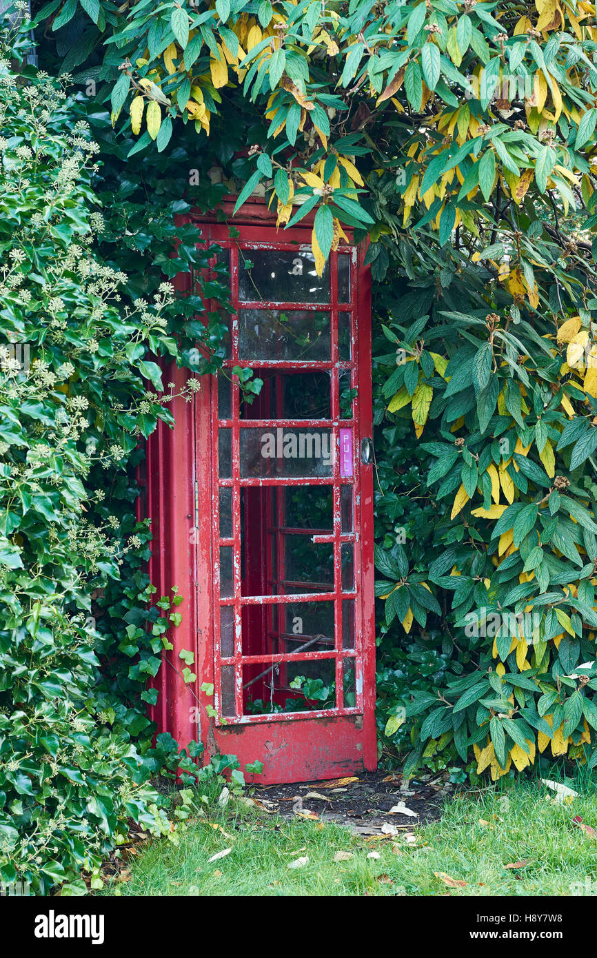Old broken and overgrown telephone box. - Stock Image