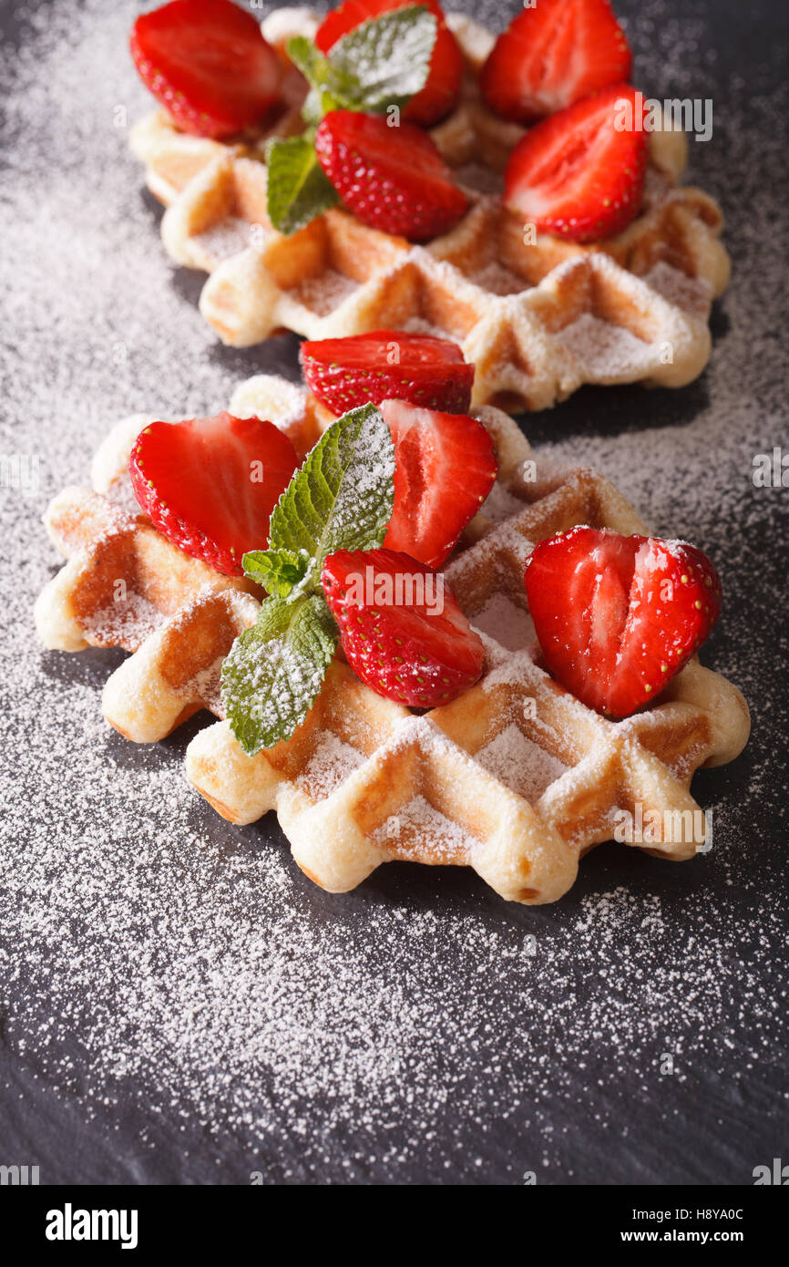 waffles with fresh strawberries and mint, sprinkled with powdered sugar close-up on the slate. vertical - Stock Image