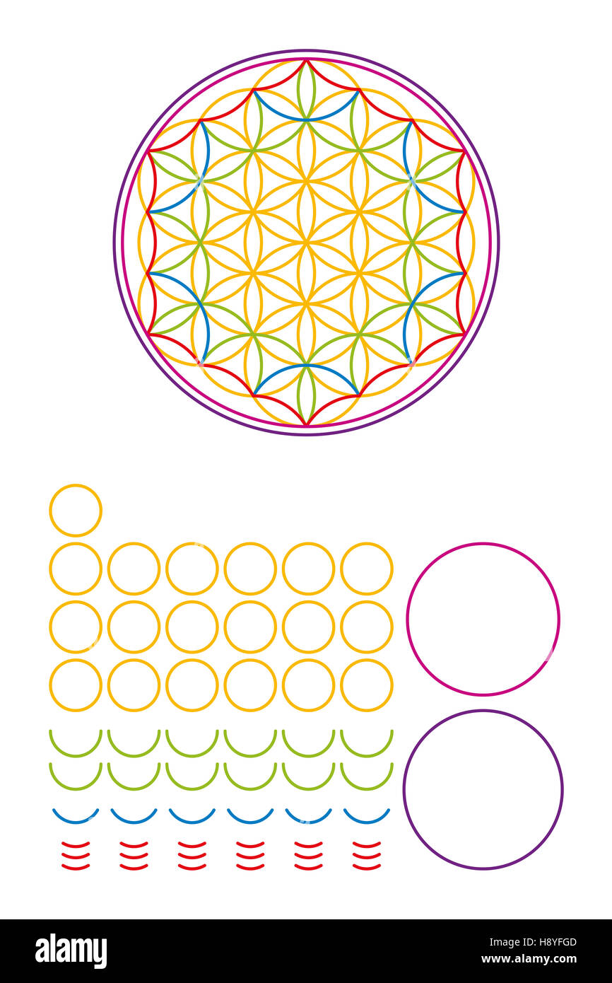 Flower of Life components and building set. Ancient symbol composed of nineteen overlapping circles. - Stock Image