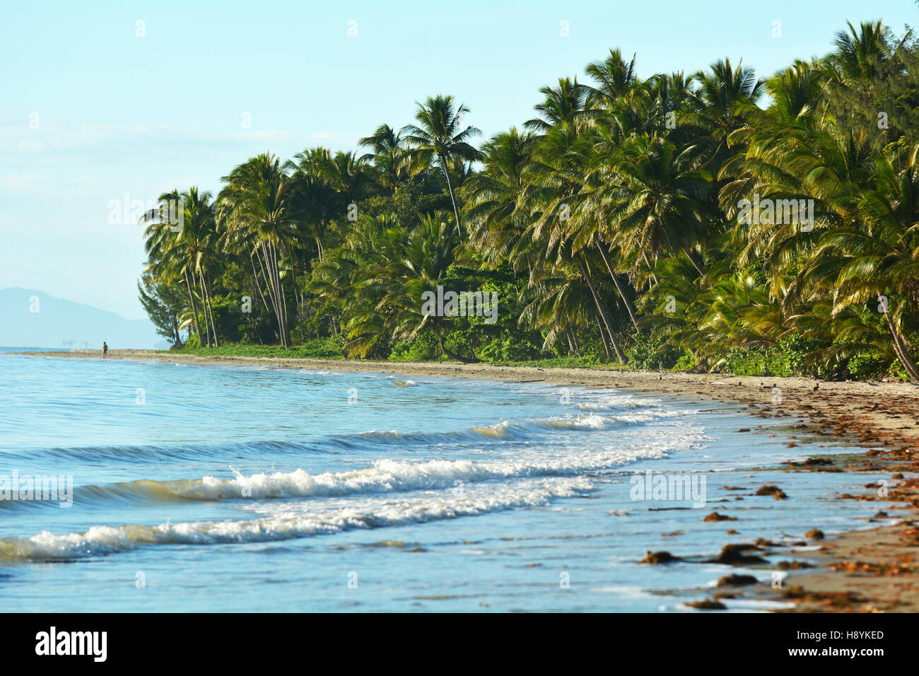 Landscape of Four Mile Beach in Port Douglas at the tropical north of  Queensland,  Australia - Stock Image