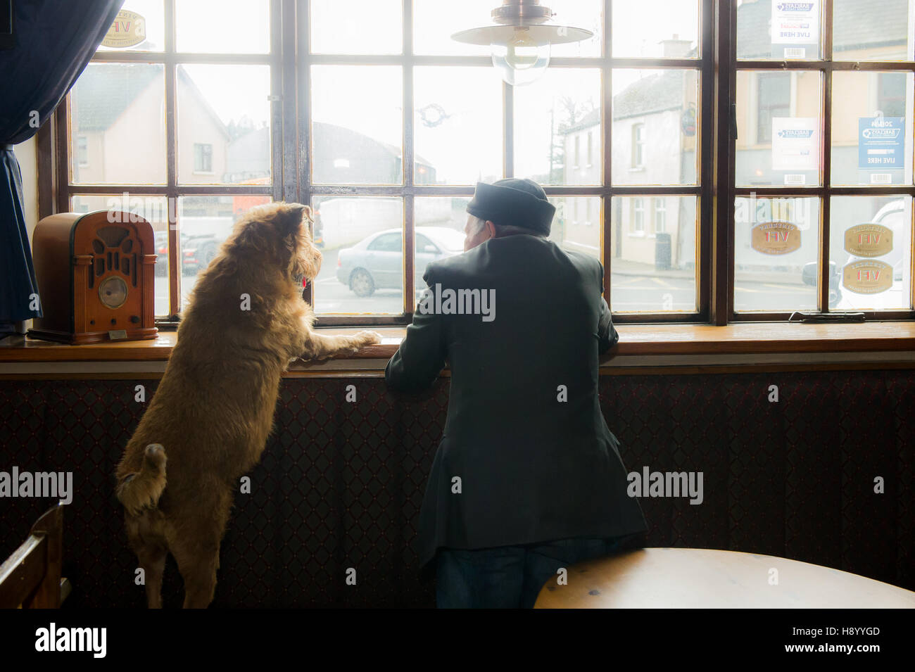 Old man and his dog looking out of the window of a pub in Coachford, Ireland. - Stock Image