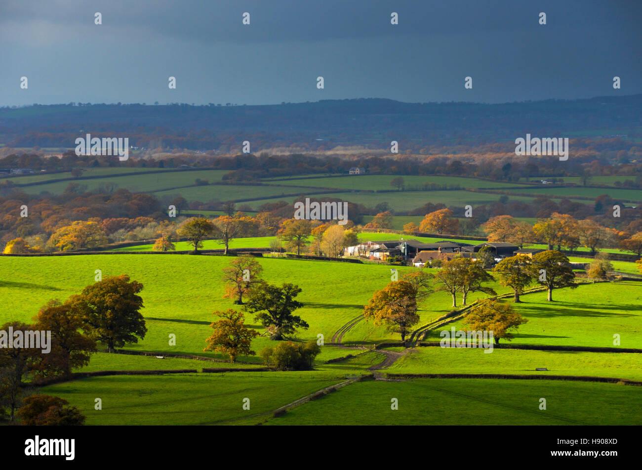 Shillingstone, Dorset, UK.  17th November 2016.  UK Weather.  A patch of sunlight illuminates the landscape near - Stock Image