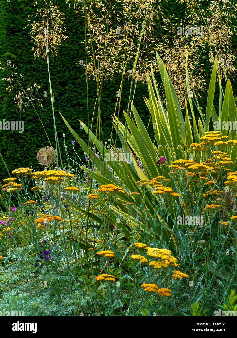 Summer borders in the Old English Garden in the grounds of Elvaston Country Park near Derby Derbyshire England UK - Stock Image