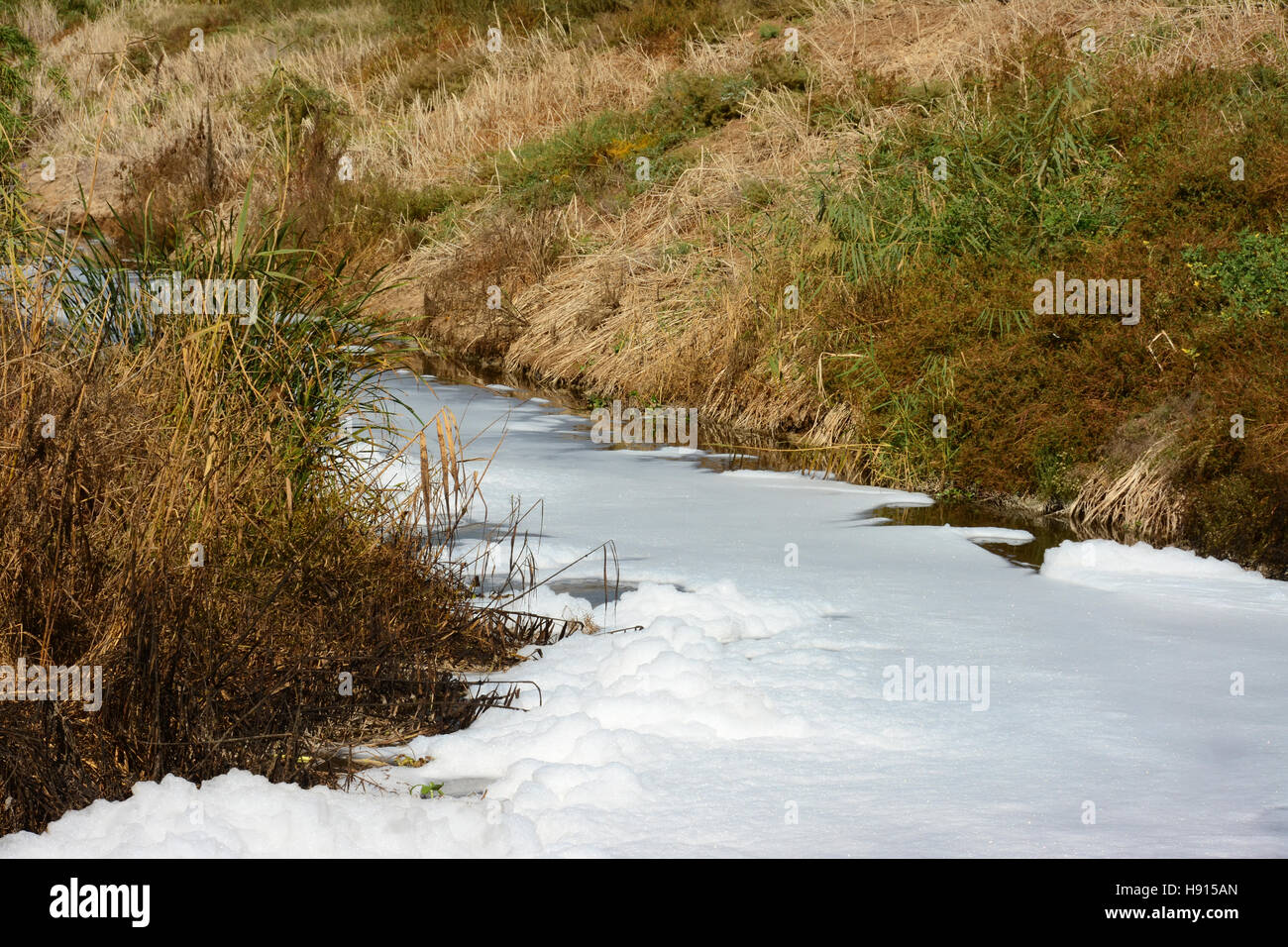 Polluted stream, - Stock Image