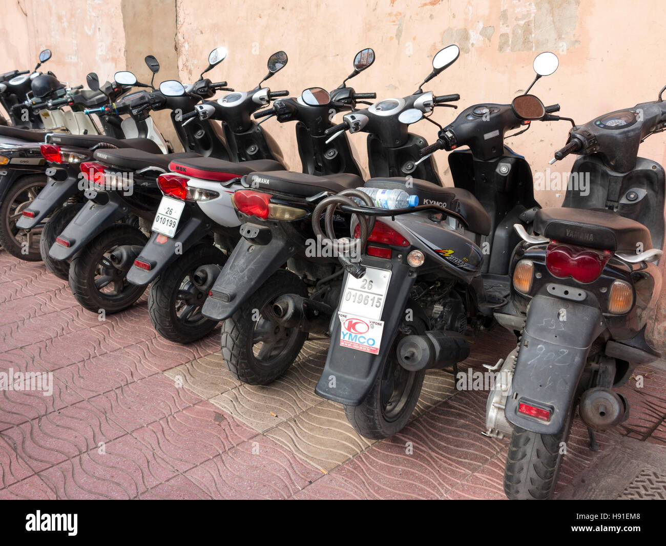 A row of neatly parked motor scooters on a Moroccan street pavement against a plain wall - Stock Image