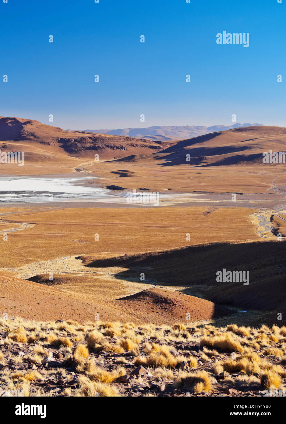Bolivia, Potosi Department, Sur Lipez Province, View towards Laguna Morejon. - Stock Image