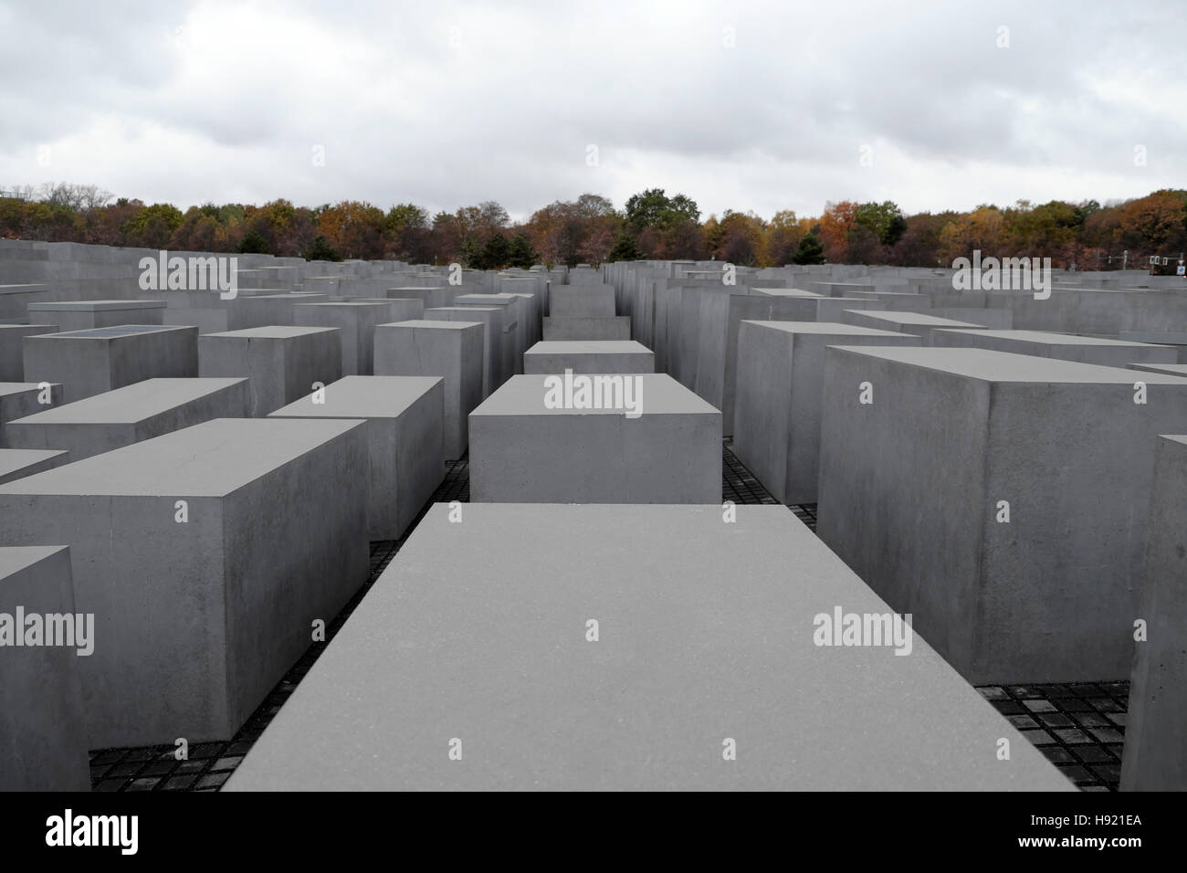 Jewish Memorial to the Murdered Jews of Europe in Berlin with a view of trees in autumn landscape Germany, Europe, - Stock Image