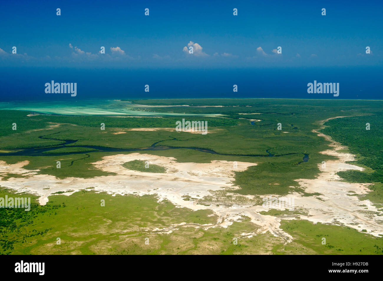 Mangroves along the coast of the Quirimbas National Park in Mozambique. Stock Photo