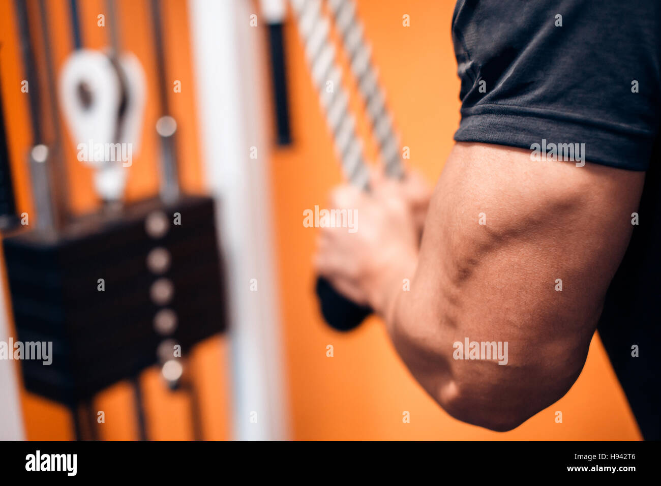 Young Bodybuilder Doing Exercise For Triceps Stock Photo