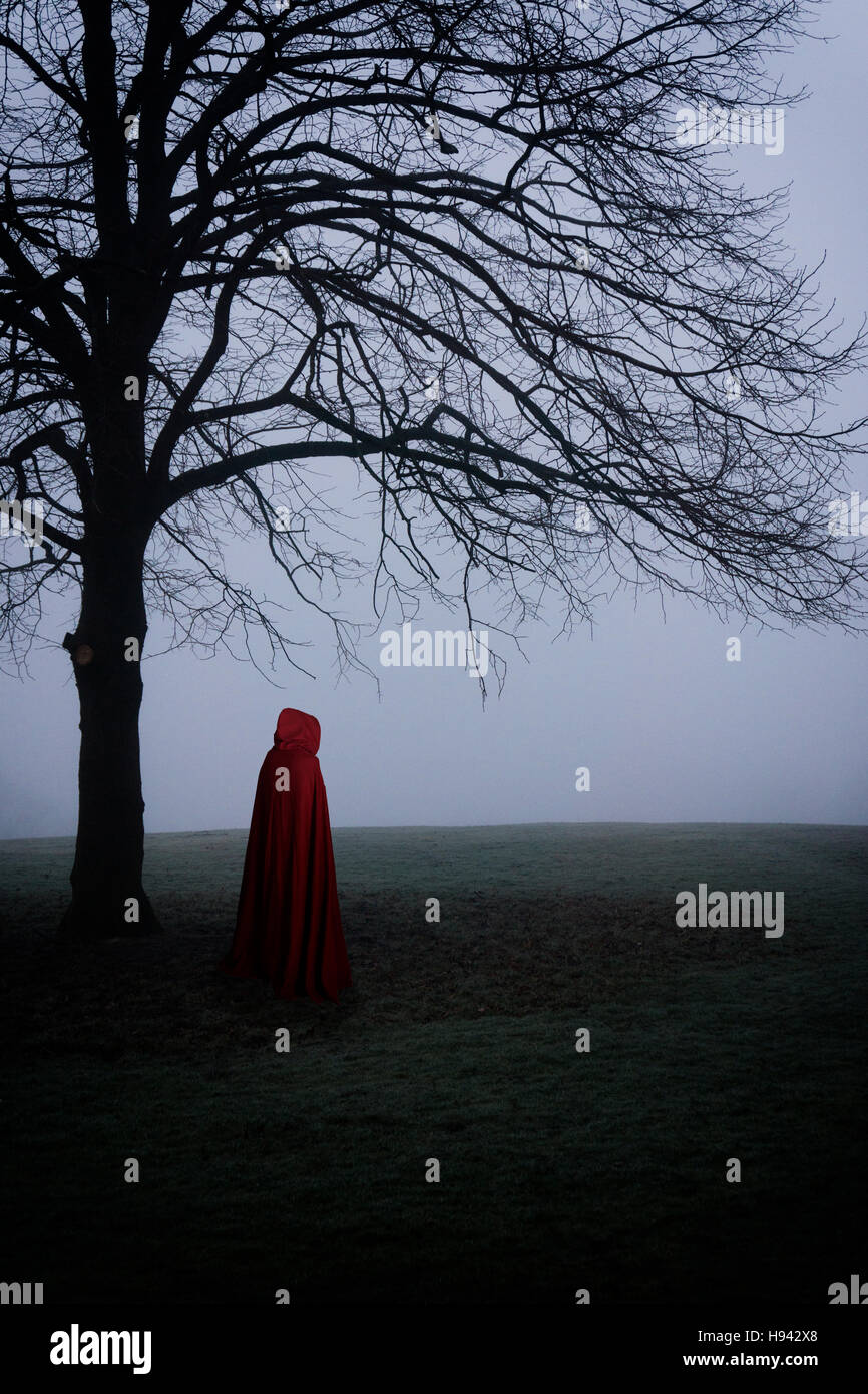 Cloaked figure in the foggy field Stock Photo