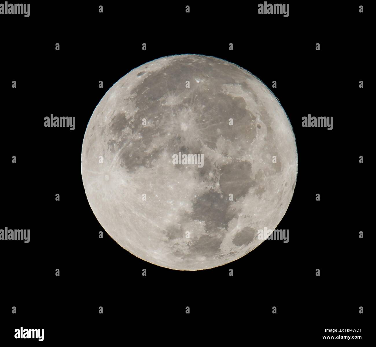 The supermoon sets in the sky November 14, 2016 in Washington, DC. The moon appears 30 percent brighter and 14 percent - Stock Image
