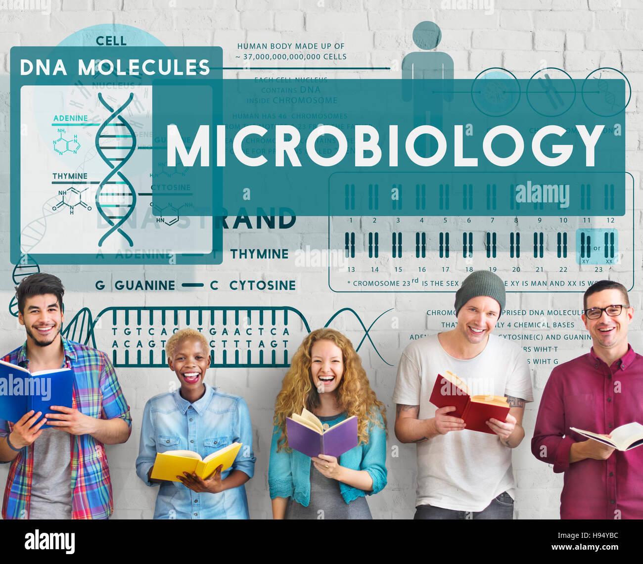 MicroBiology Bacteria Disease Illness Laboratory Concept - Stock Image