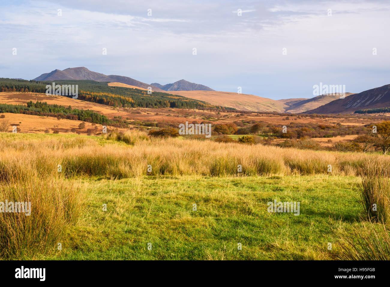 Machrie Moor, Isle of Arran, North Ayrshire, Scotland - Stock Image