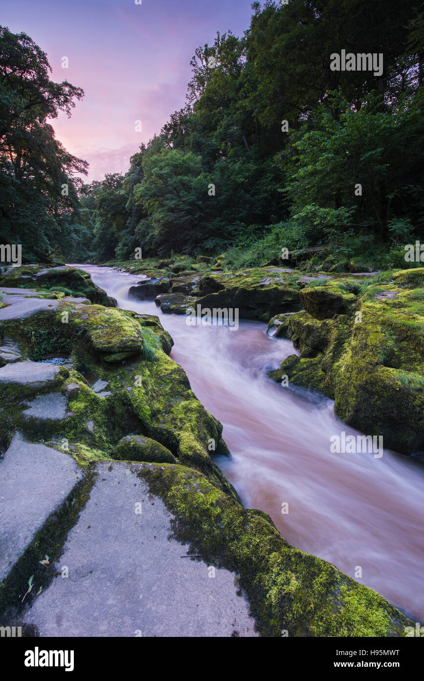 At sunset, the River Wharfe flows through The Strid (a narrow, rocky gap) on the Bolton Abbey Estate, Yorkshire Stock Photo