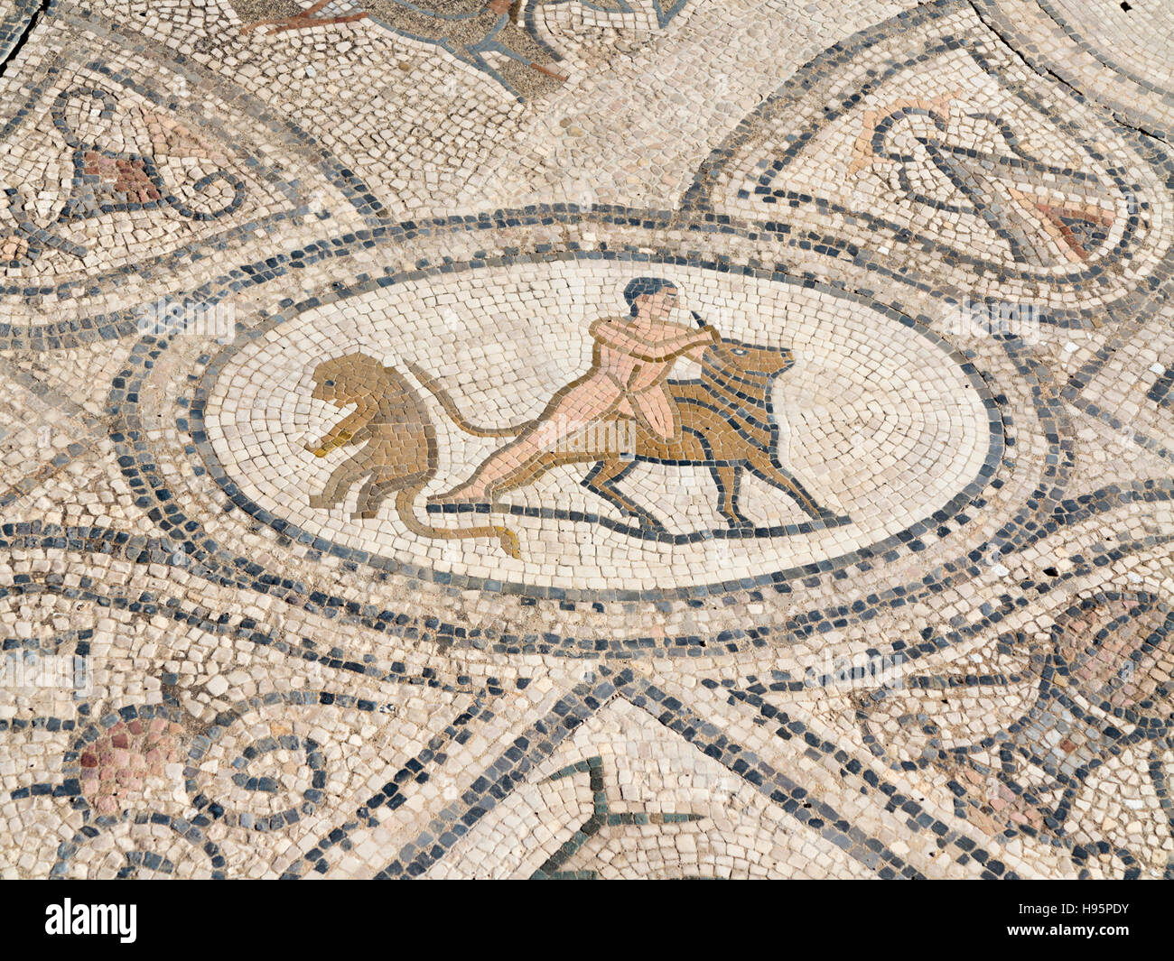 Mosaic details in the ancient town of Volubilis in the Zerhoun Massif area of Morocco - Stock Image
