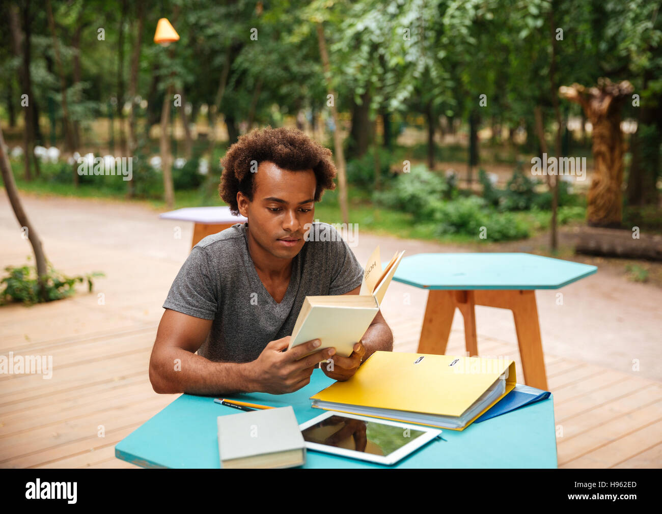 Serious african young man sitting and studying in the park - Stock Image