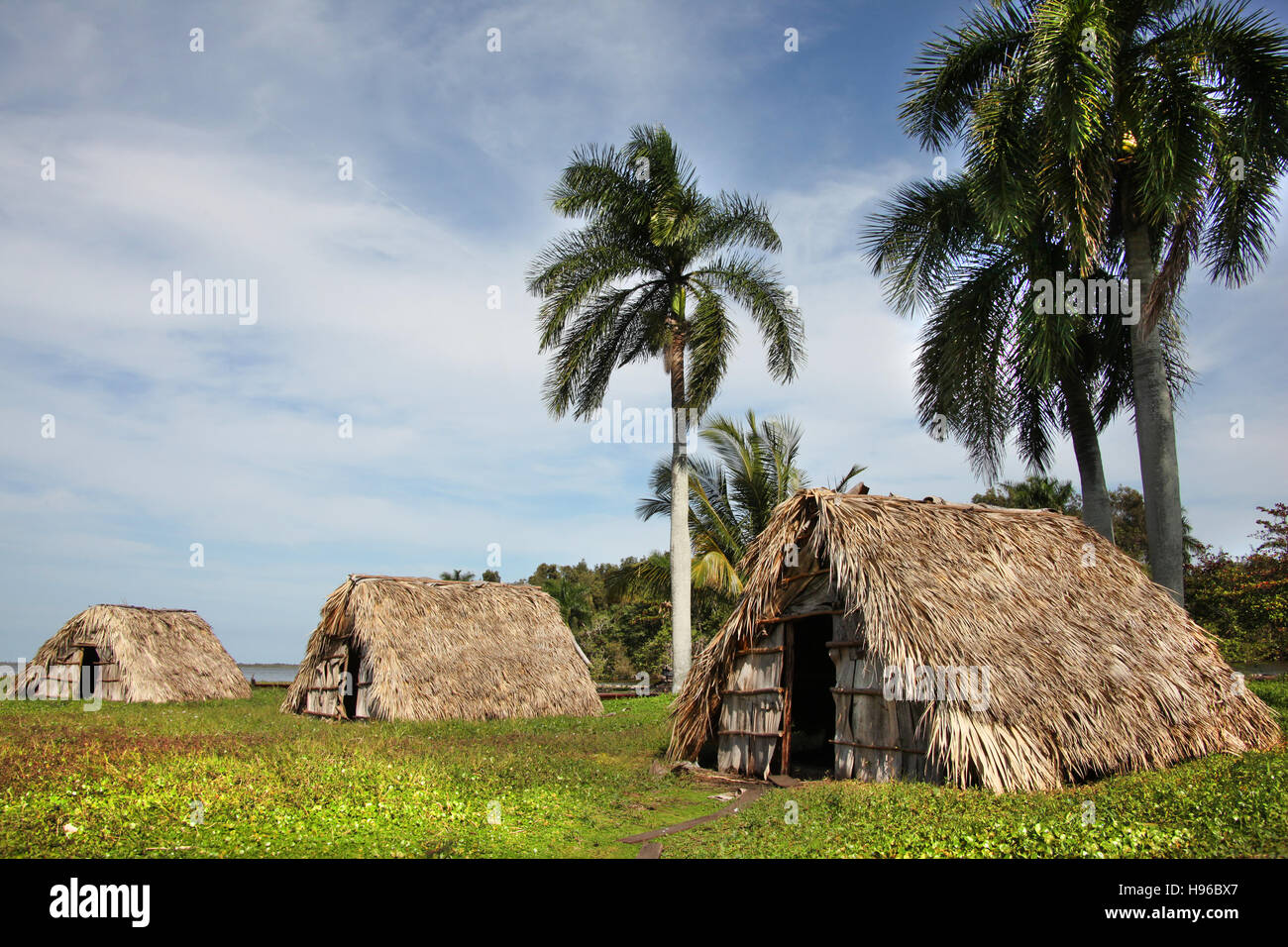 Beautiful landscape of small islands with traditional straw hut homes and palm trees guama cuba caribbean