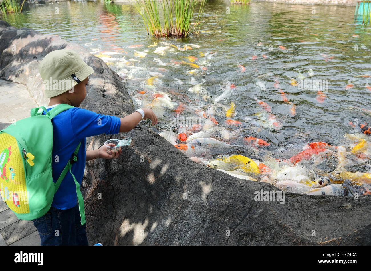 Kid Feeding Fish At Batu Zoo Malang East Java Indonesia Stock Photo Alamy