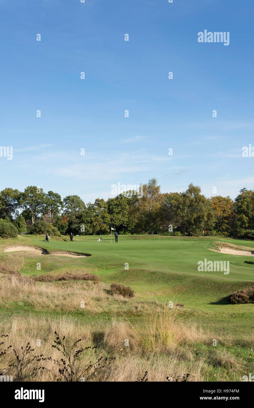 Green with bunkers, Sunningdale Golf Course, Sunningdale, Berkshire, England, United Kingdom Stock Photo