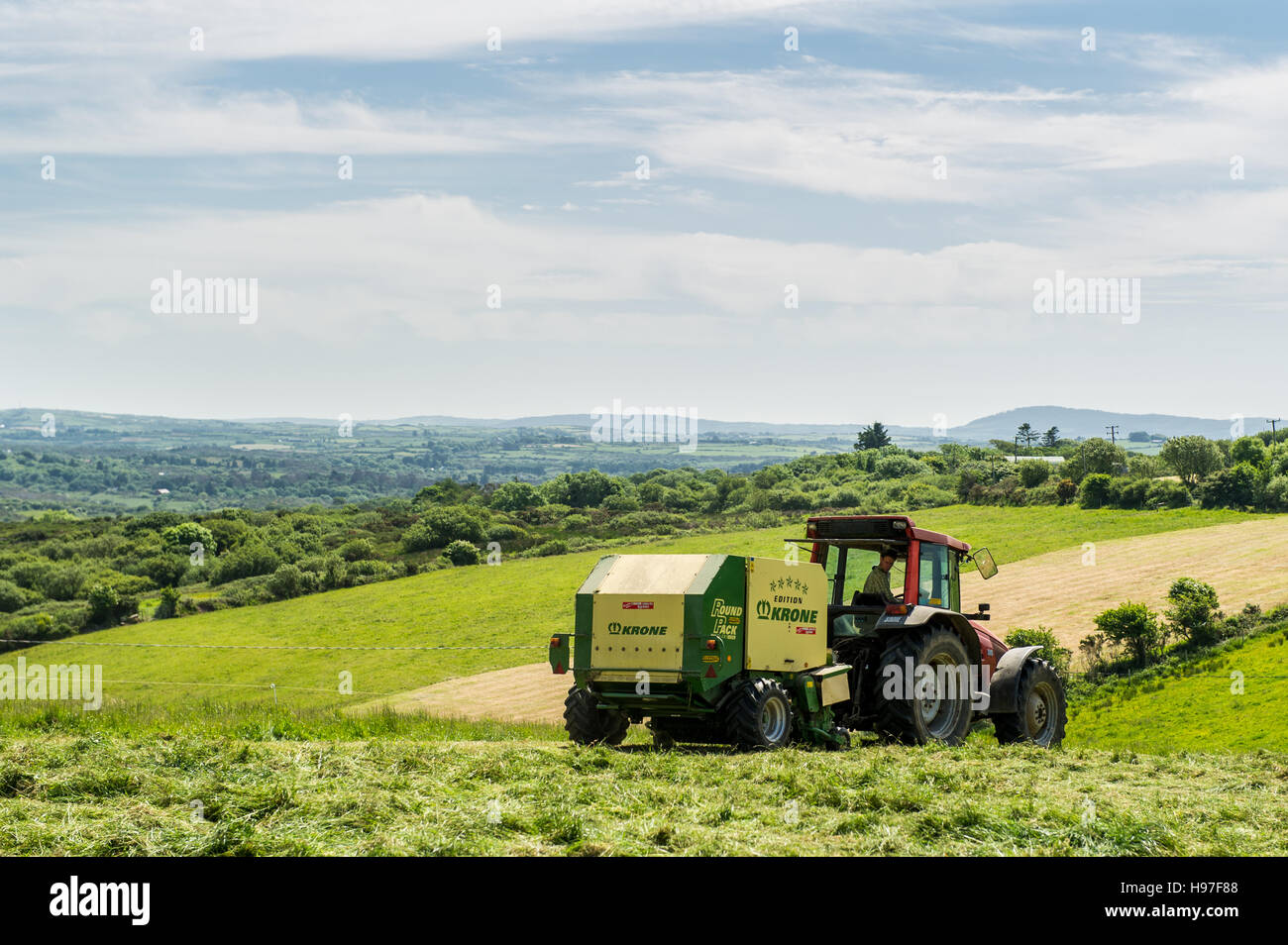 An Irish farmer bails silage ready for wrapping in June. The bails will be used as animal feed during the winter - Stock Image
