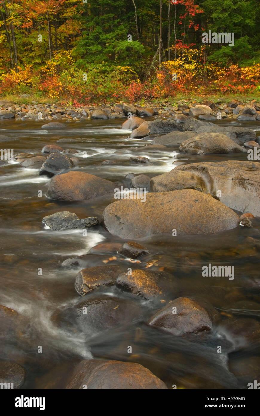 Sacandaga River, Wilcox Lake Wild Forest, Adirondack Forest Preserve, New York - Stock Image