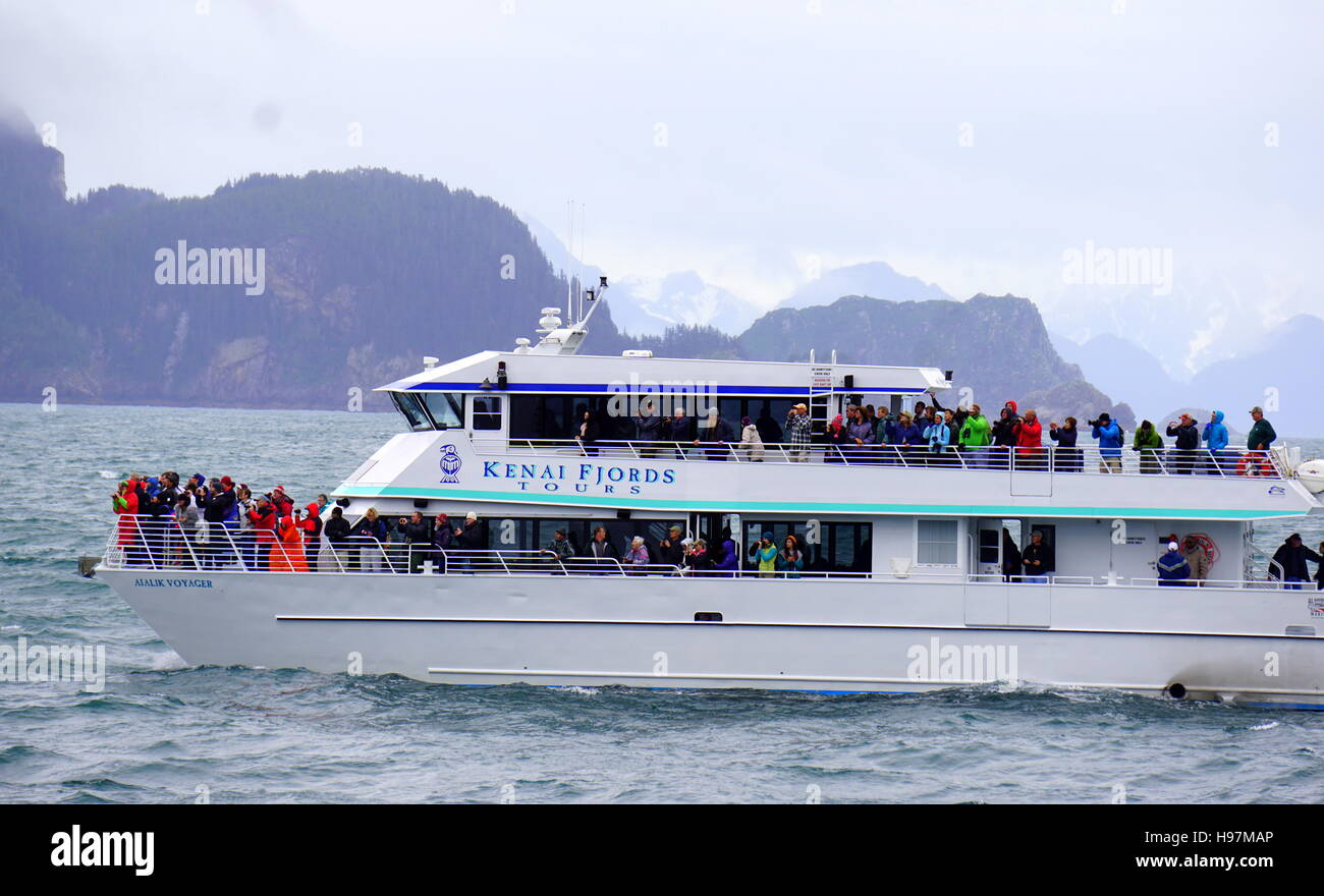 Tourists whale watching on the Kenai Fjords Tour Boat Seward