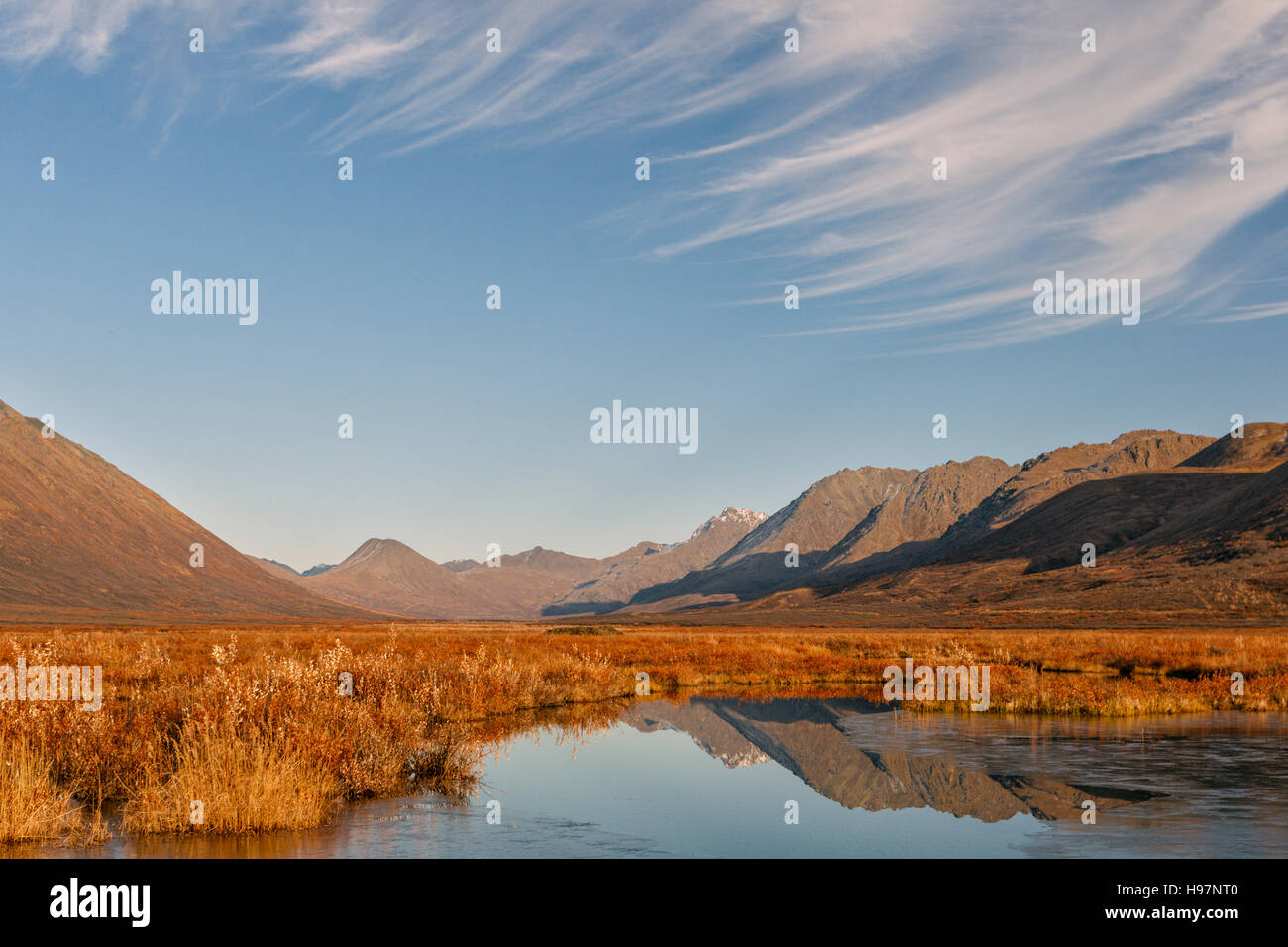 A beaver pond reflecting the fall colors of the Alaskan Range mountains - Stock Image