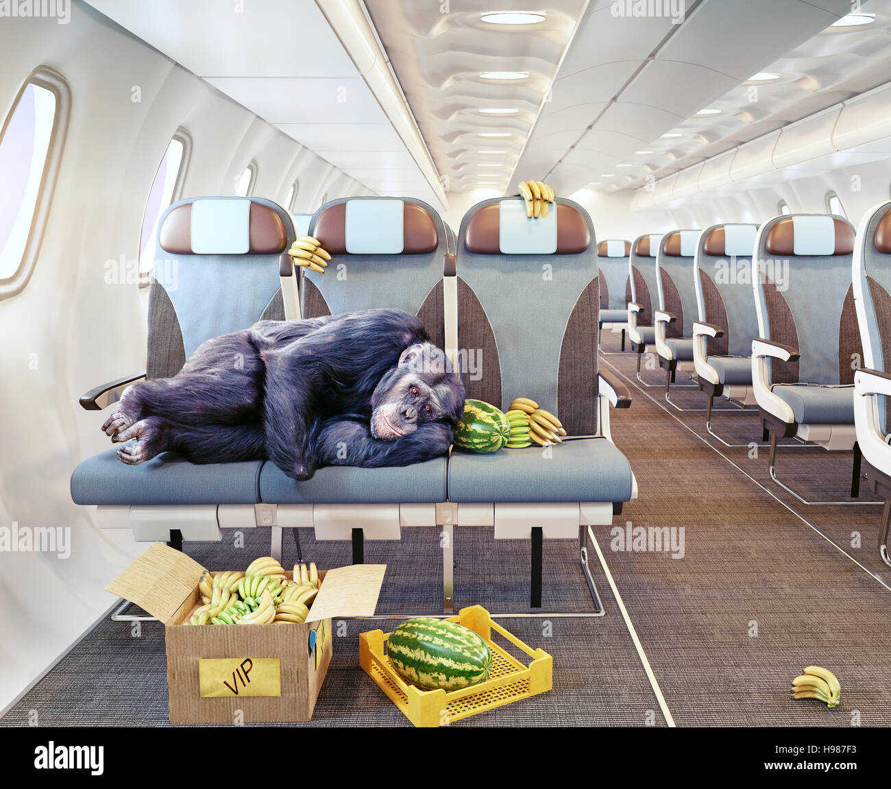 The monkey as the passenger of the airplane. Photo combination concept. - Stock Image