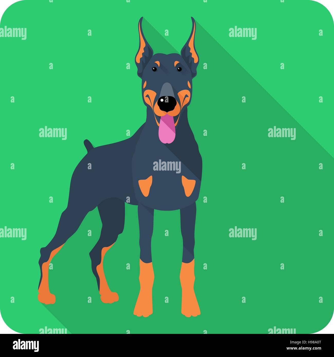Vector dog Doberman Pinscher icon flat design - Stock Vector