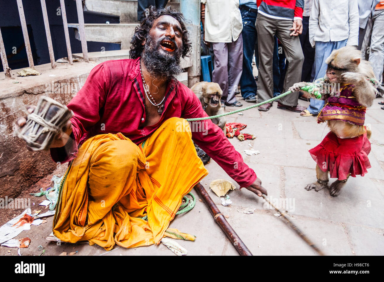 Animal trainer puppeteer and monkey performing at the streets of Varanasi, India - Stock Image