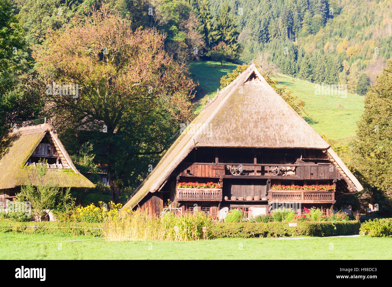 Gutach Schwarzwaldbahn