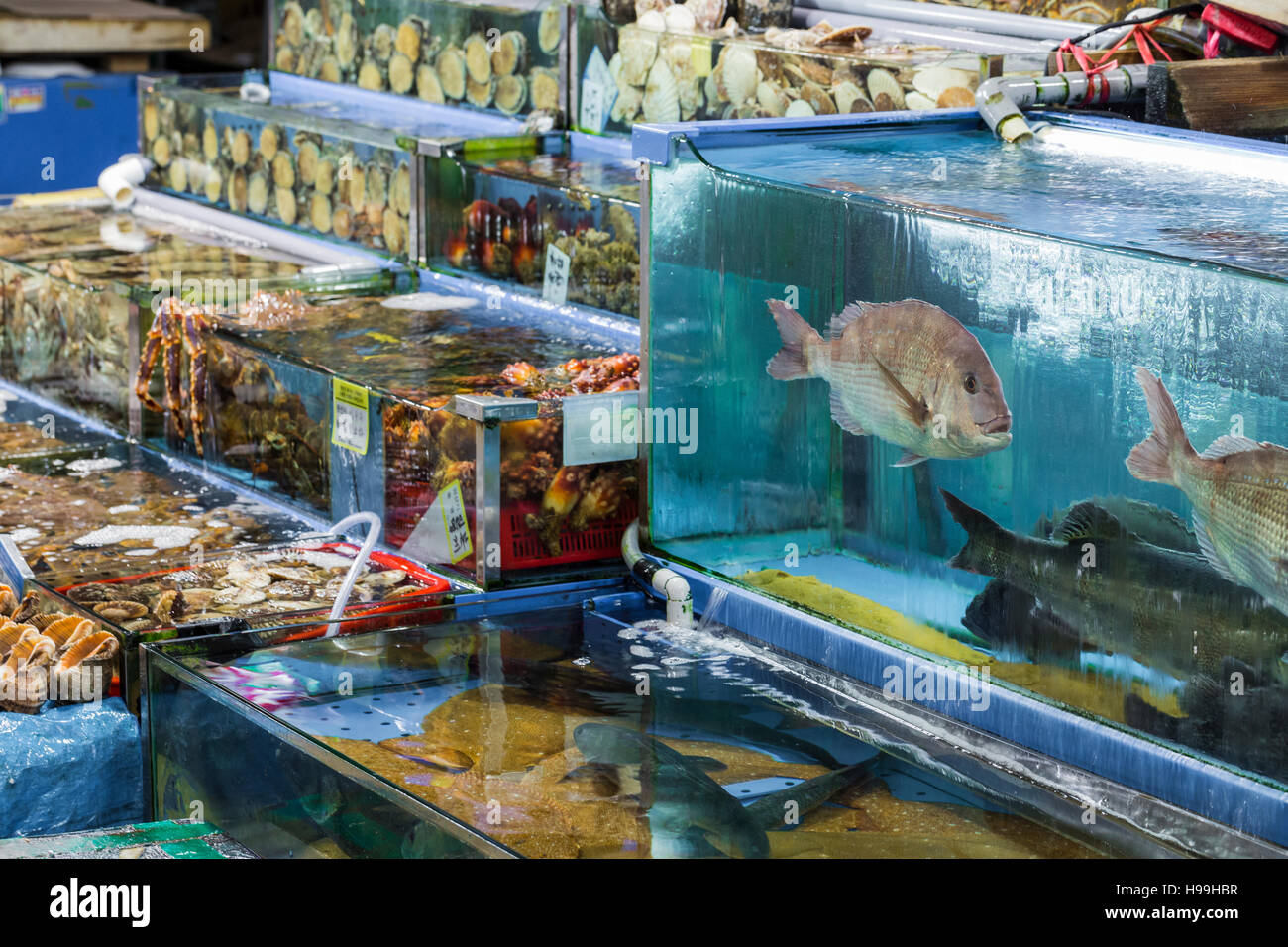 Noryangjin Fisheries Wholesale Market , Expansive wholesale & retail market with stalls offering hundreds of types Stock Photo