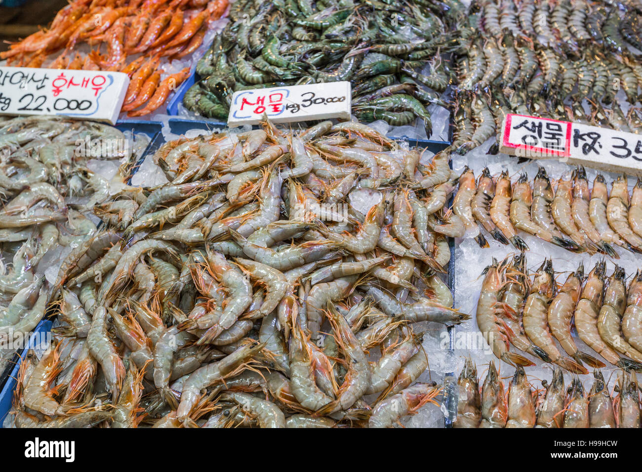 Noryangjin Fisheries Wholesale Market The 24 hour market has over 700 stalls selling fresh and dried seafood. Stock Photo
