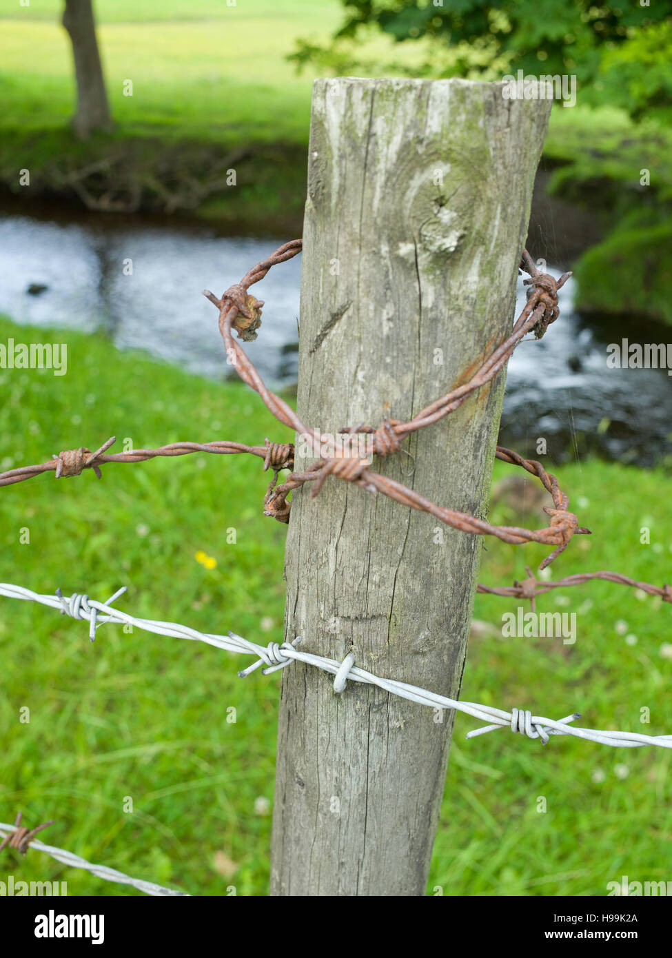 Barbed wire on wooden fence post UK Stock Photo