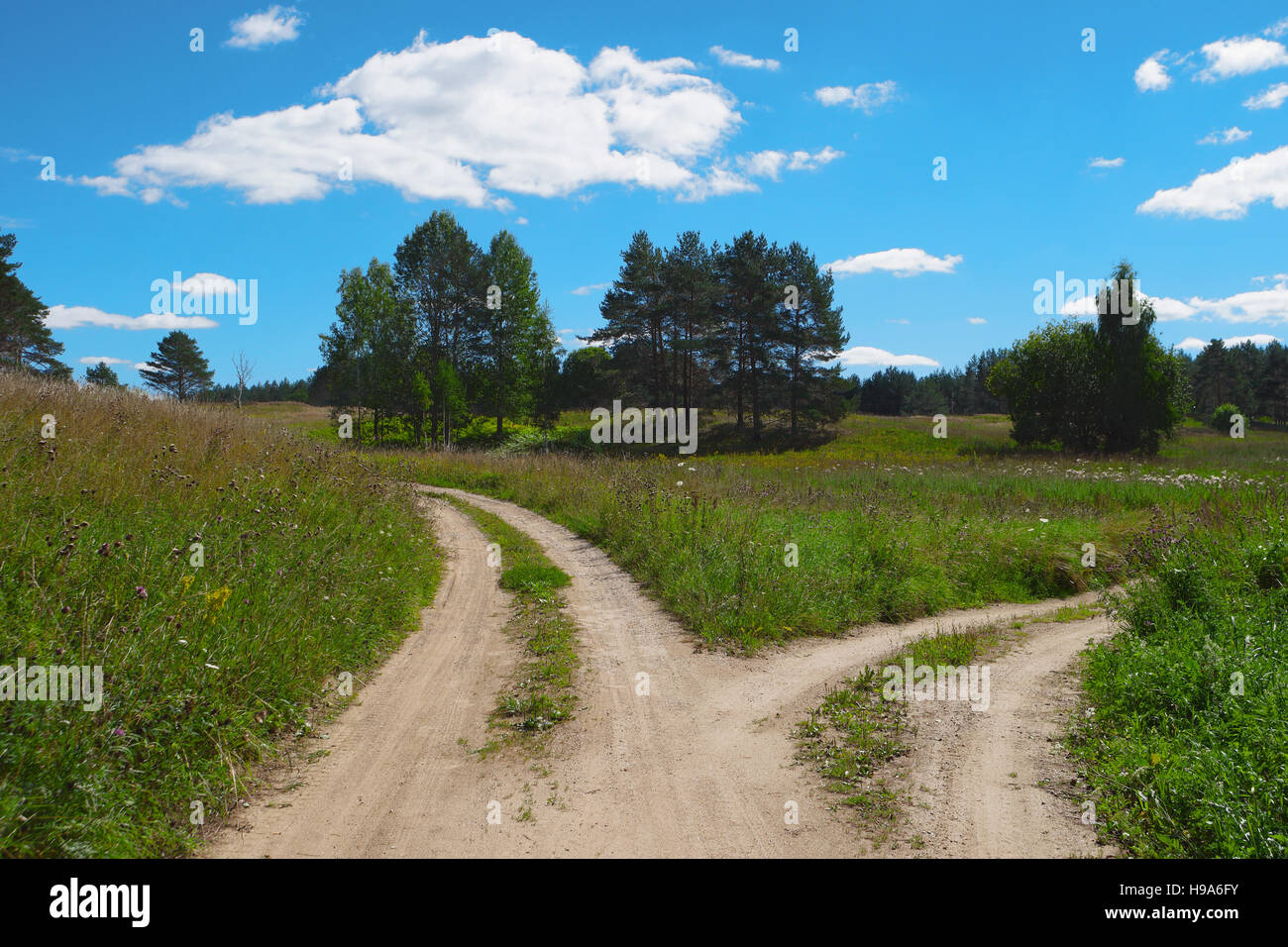 Rural scenic landscape with crossroad on hill in forest. Two different directions. Concept of choose the correct - Stock Image